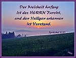 Image Result For Zitate Latein Liebeskummer